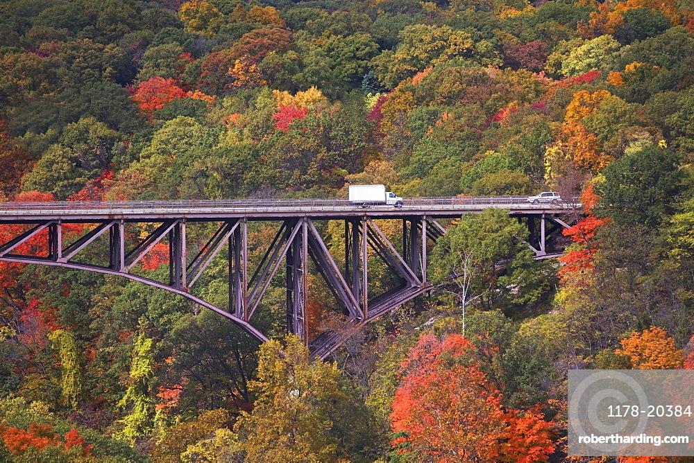 USA, New York, Bear Mountain, bridge in forest