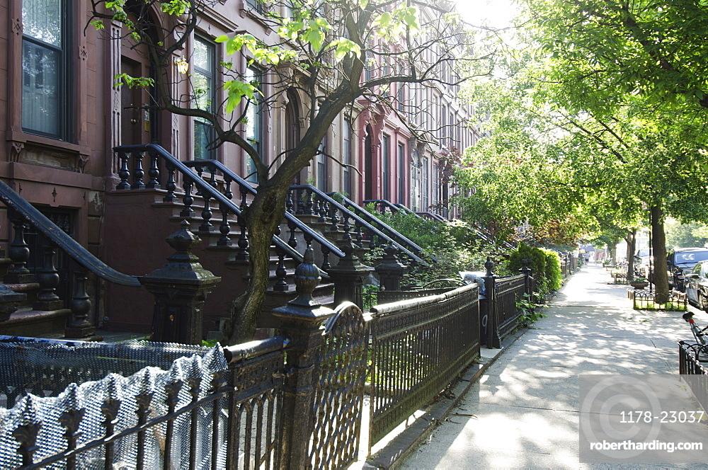 Empty street, Brooklyn, New York