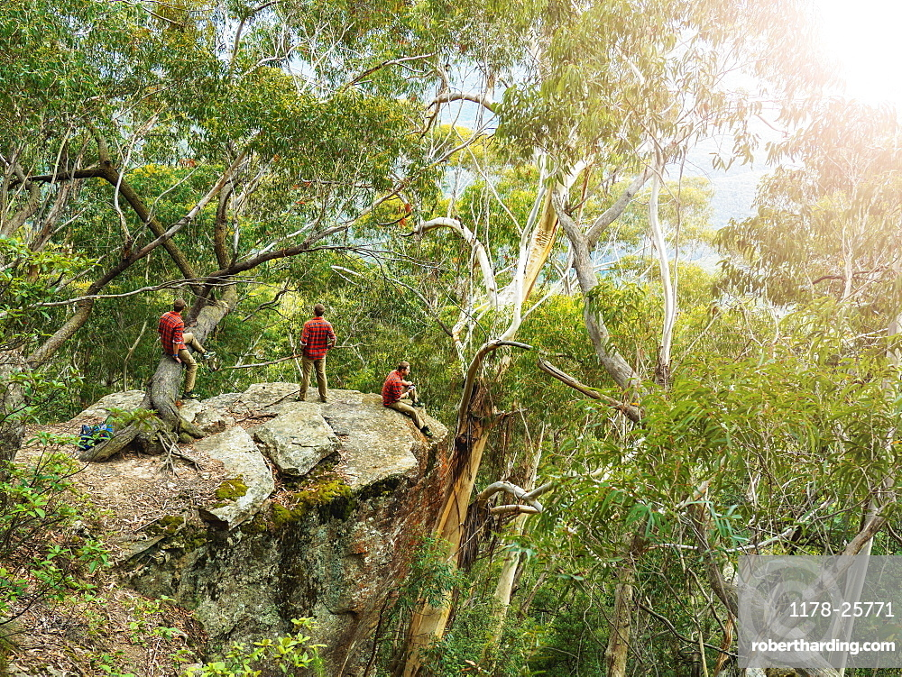 Australia, New South Wales, Katoomba, Three people on cliff in forest in Blue Mountains