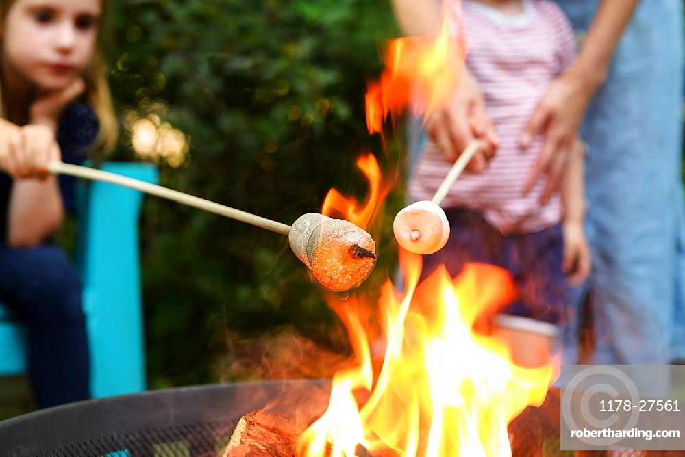 Family toasting marshmallows over brazier