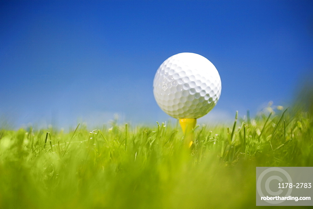 Golf ball on tee in grass outdoors