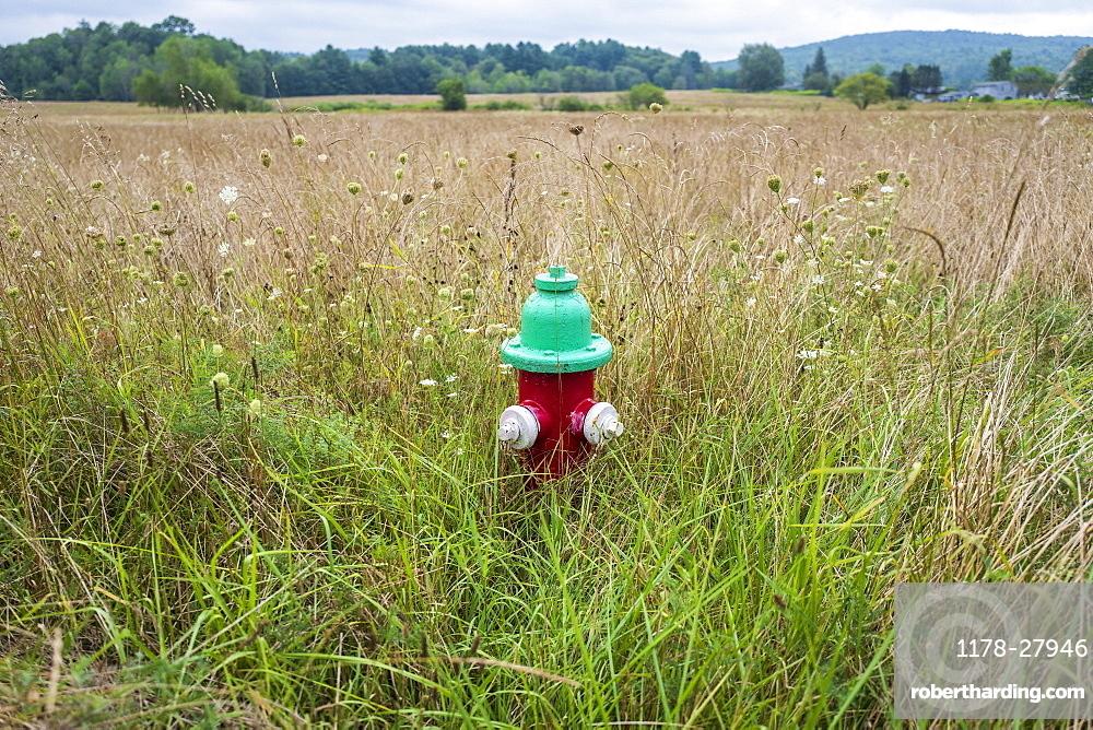 Fire hydrant in field in Dalton, Massachusetts, United States of America