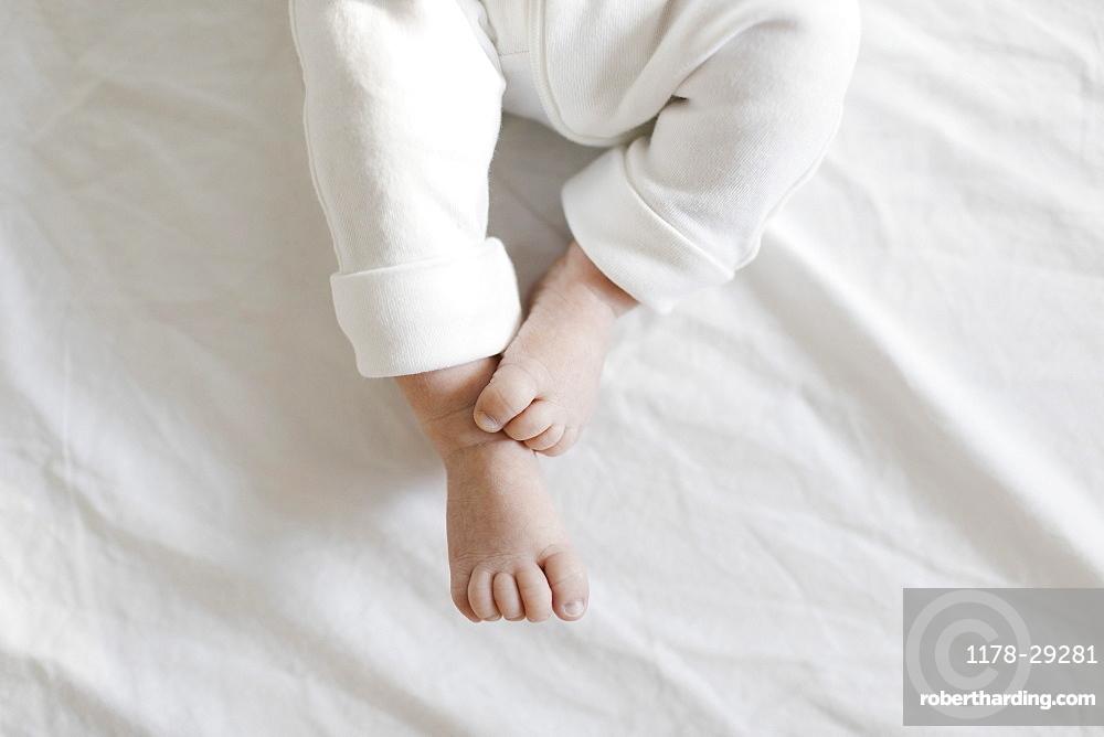 Feet of baby boy (2-5months)