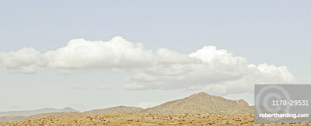USA, Landscape with desert and mountain peak