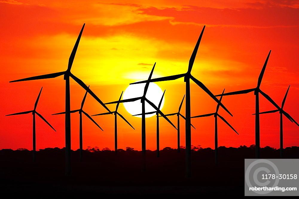 USA, California, Altamira Pass, Wind turbines at sunset