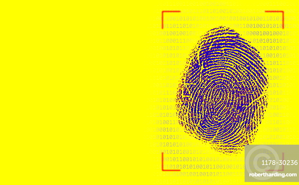 Fingerprint against binary numbers on yellow background