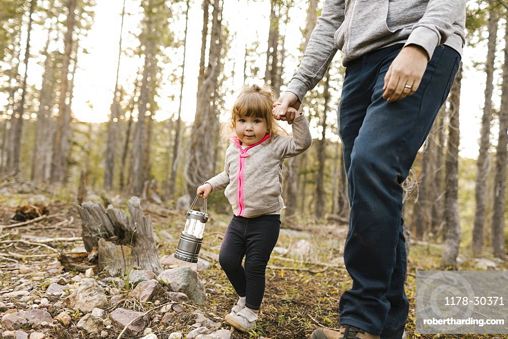 Father with daughter (2-3) walking in forest, Wasatch Cache National Forest