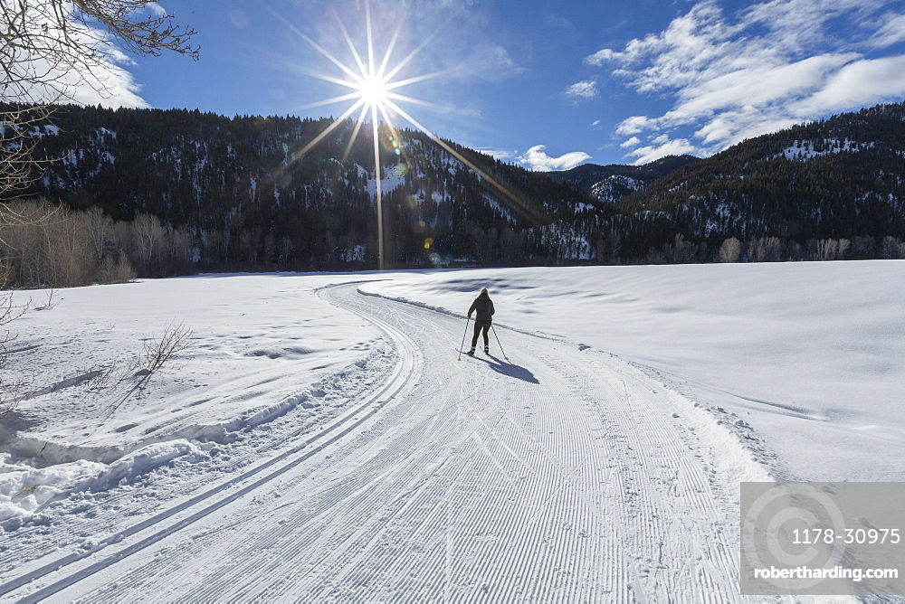 United States, Idaho, sun valley, Woman skiing in winter landscape