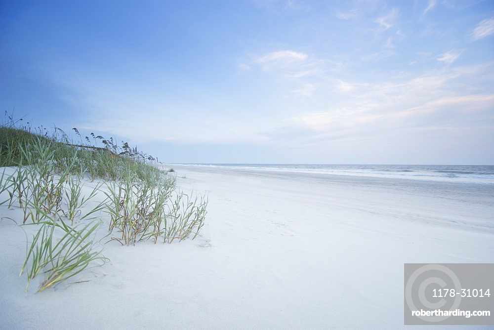 North Carolina, Topsail Island, Onslow Beach, Empty beach with grass