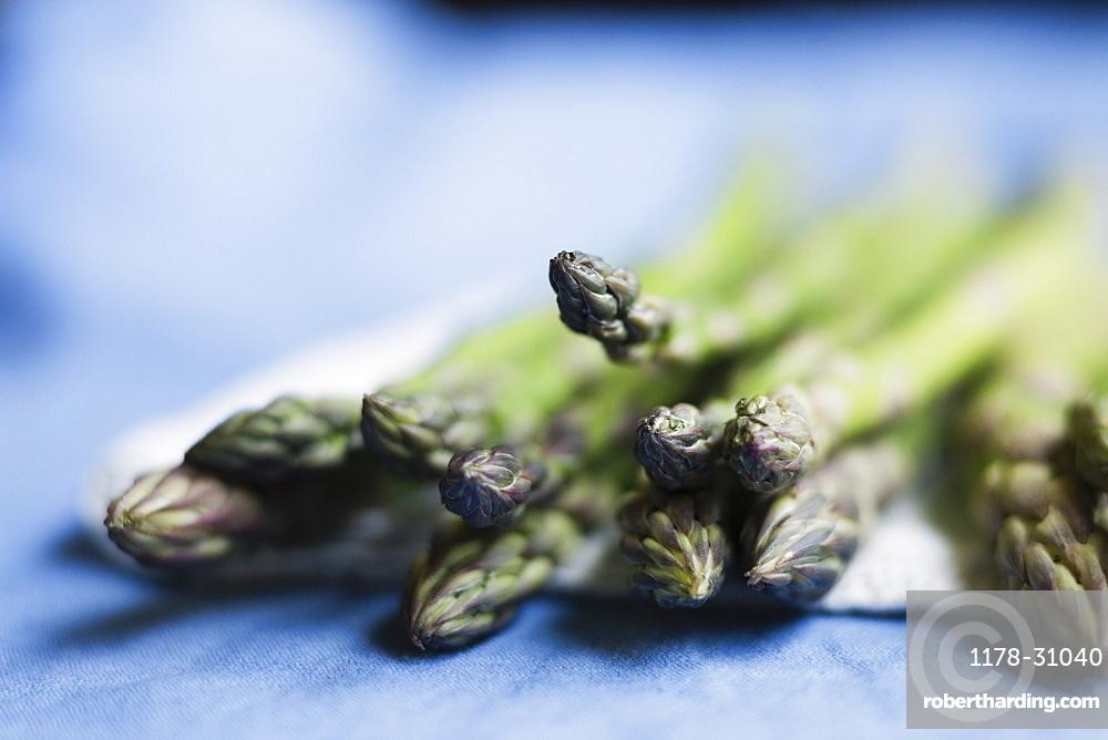 Still life of fresh asparagus on napkin