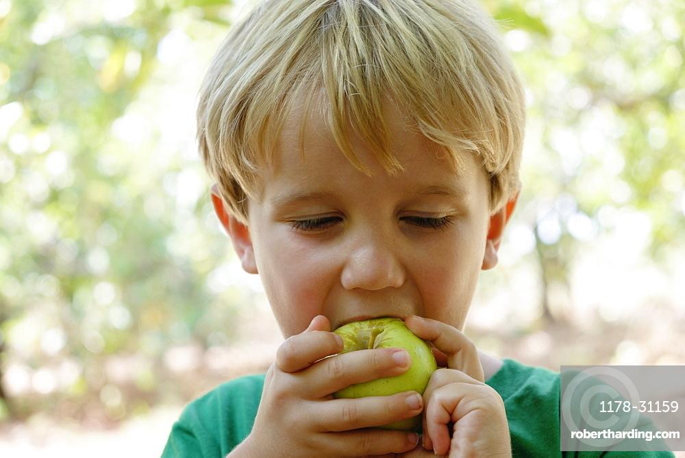 Portrait of boy eating green apple on fruit farm