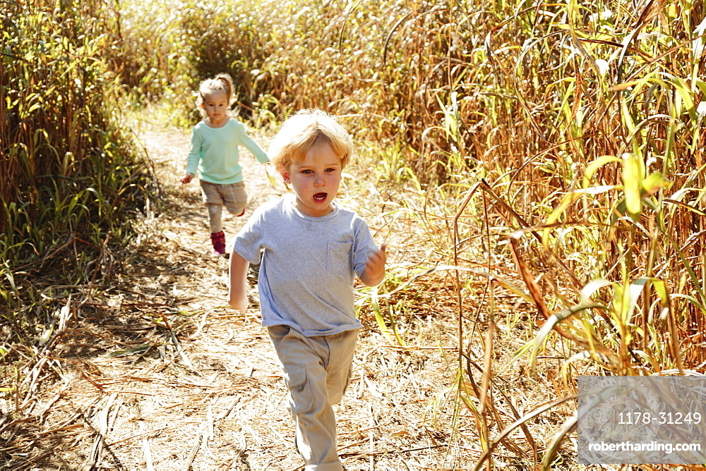 Boy and girl running in field with crops