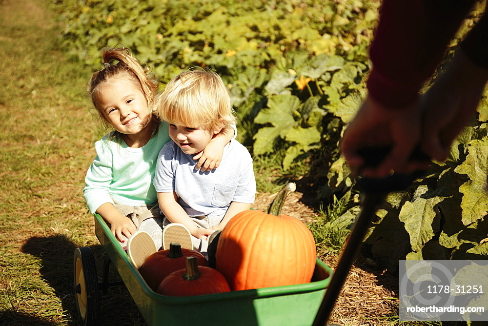Brother and sister being pulled in pumpkin cart
