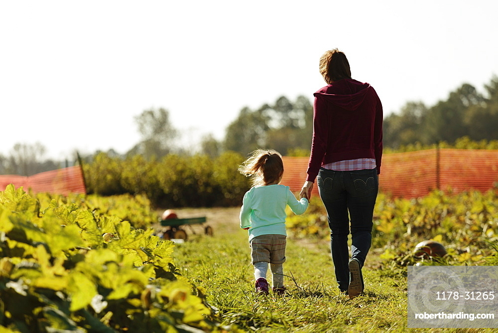 Mother and daughter holding hands in pumpkin field