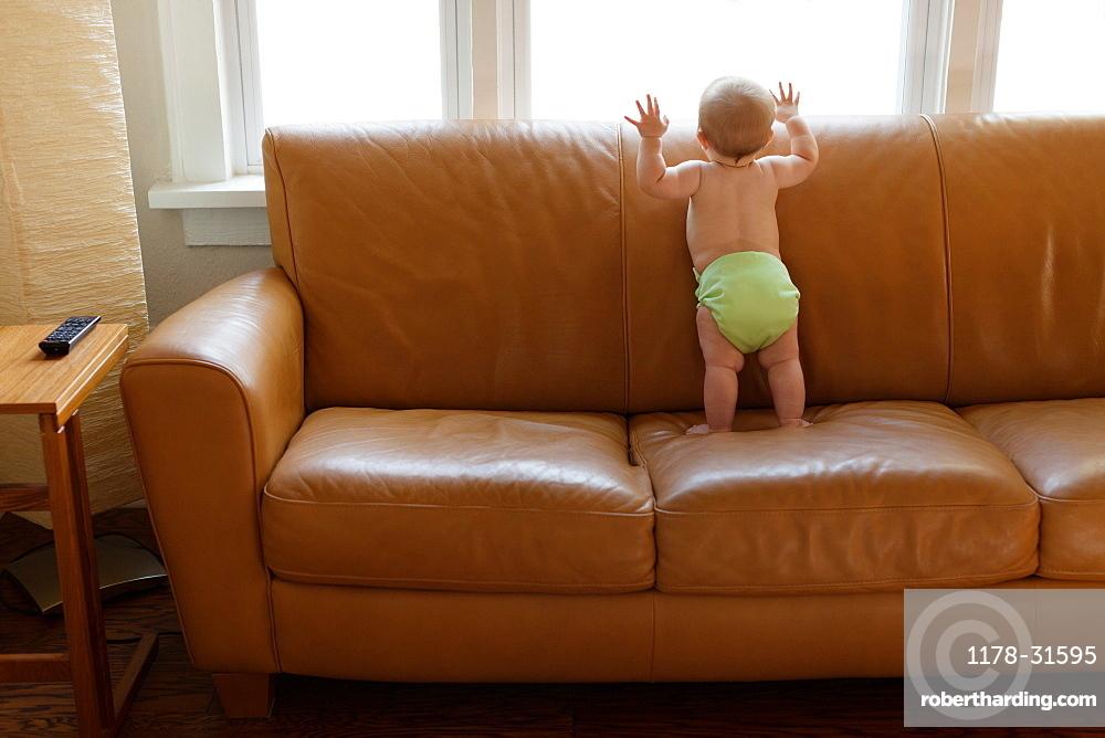 Baby boy playing on sofa