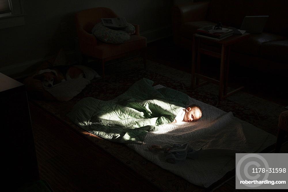 Baby boy sleeping in sunspot in bedroom
