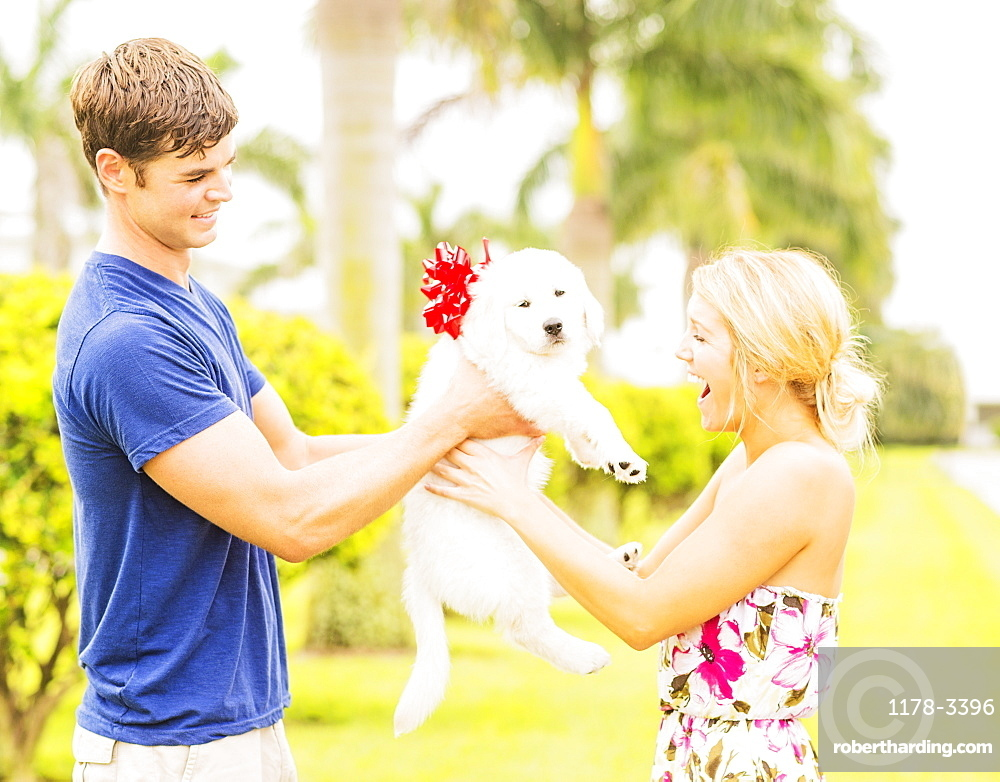 Boyfriend giving white puppy with ribbon bow to girlfriend as present, Jupiter, Florida