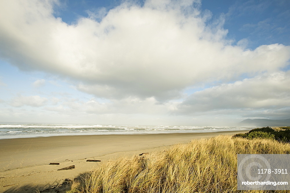 Landscape, Rockaway Beach, Oregon