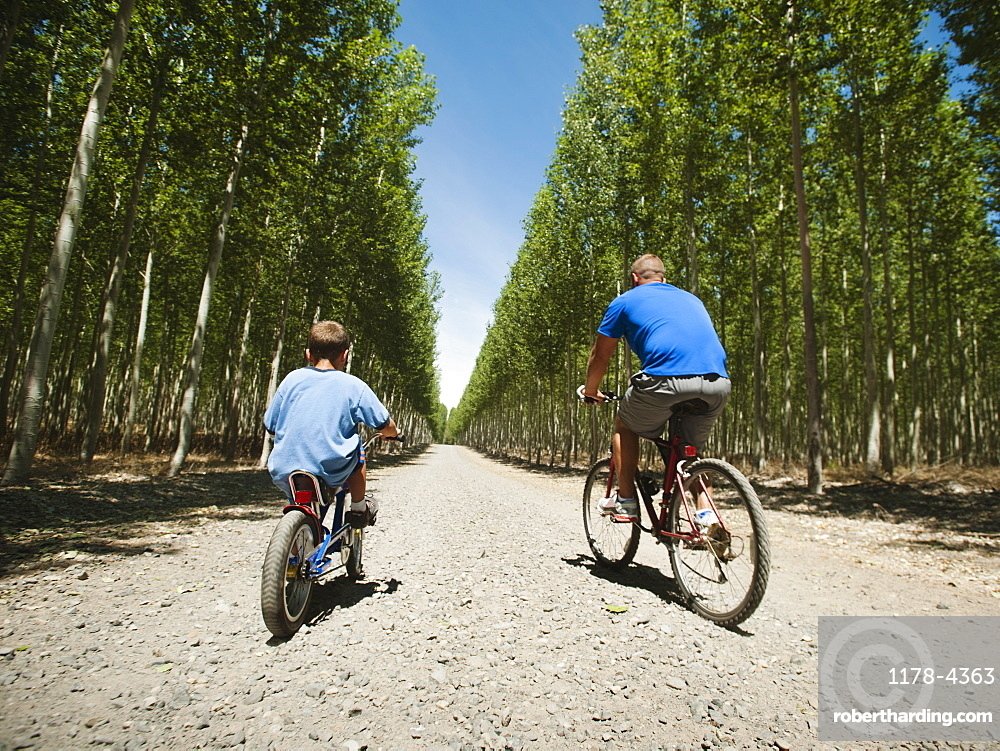Father with son (8-9) cycling up country road