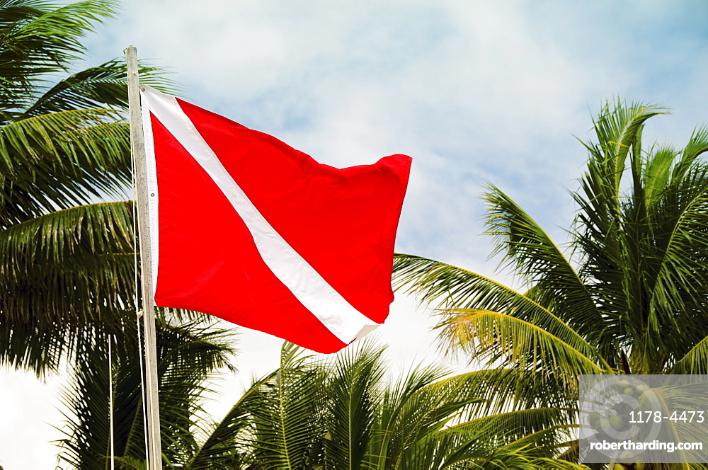 Mexico, Playa Del Carmen, red flag with palm trees