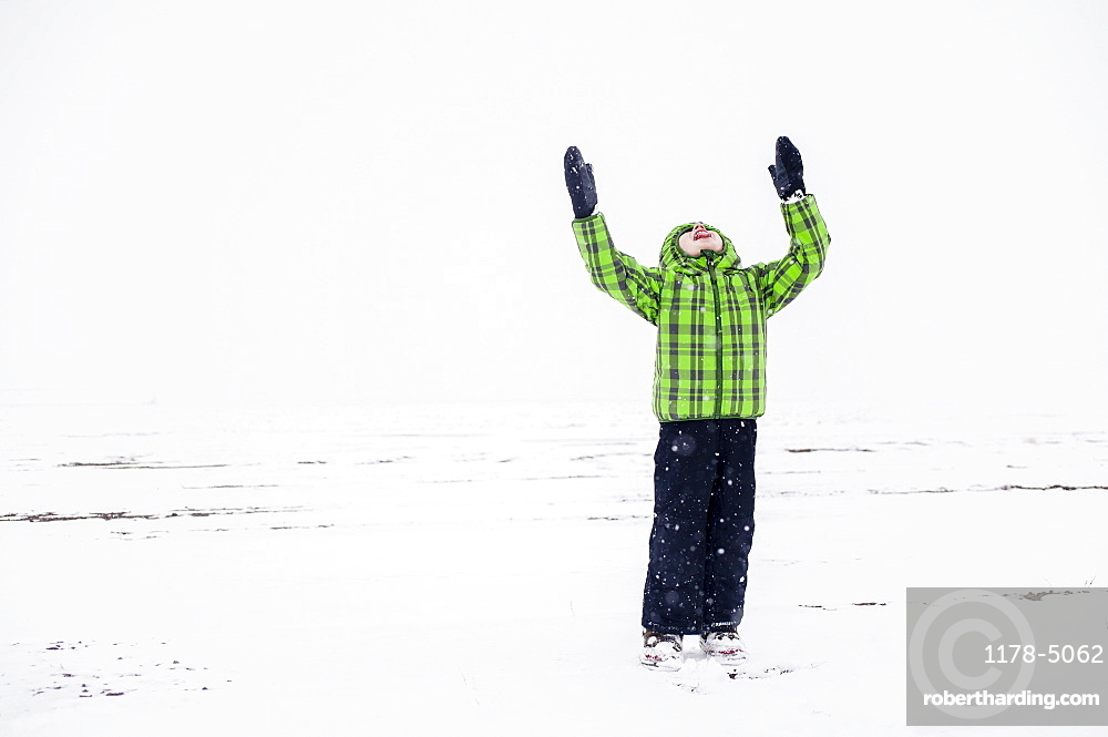 Boy (4-5) with raised arms in snowy landscape, Colorado, USA
