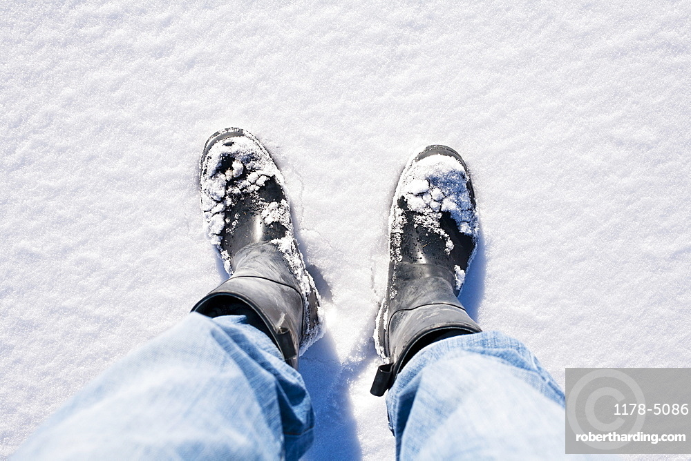 Close-up of human legs in snow