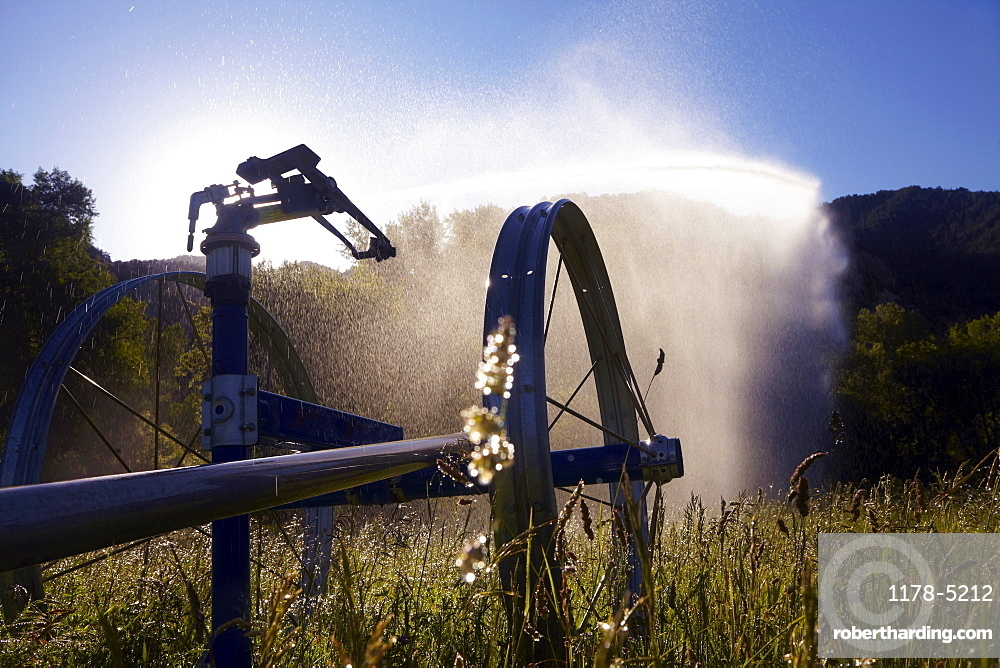 Agricultural Sprinkler on field, Colorado, United States