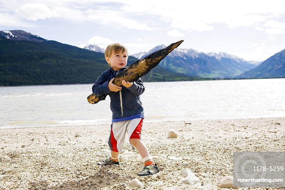 Boy (2-3) holding piece of wood, Colorado, USA