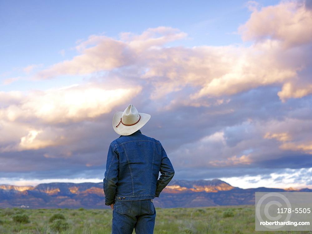 USA, Utah, Rear view of man standing in desert landscape