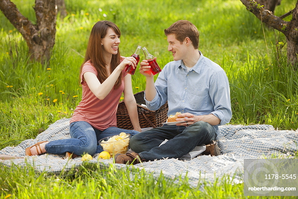 USA, Utah, Provo, Young couple toasting drinks during picnic