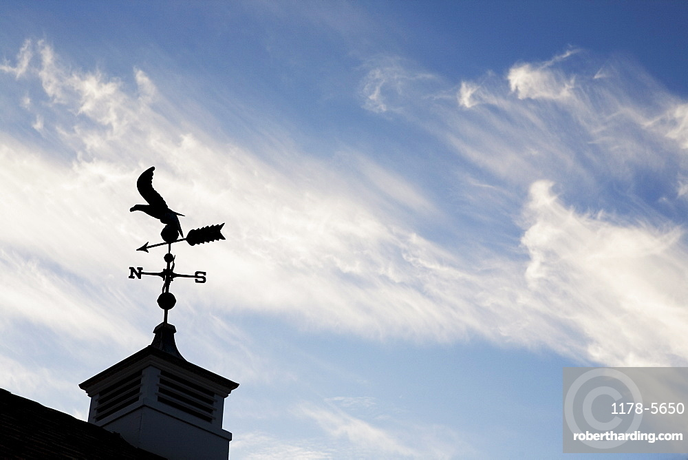USA, New Jersey, Building top with wind vane