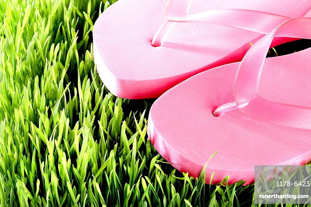 Pair of pink Flip-Flops, close-up