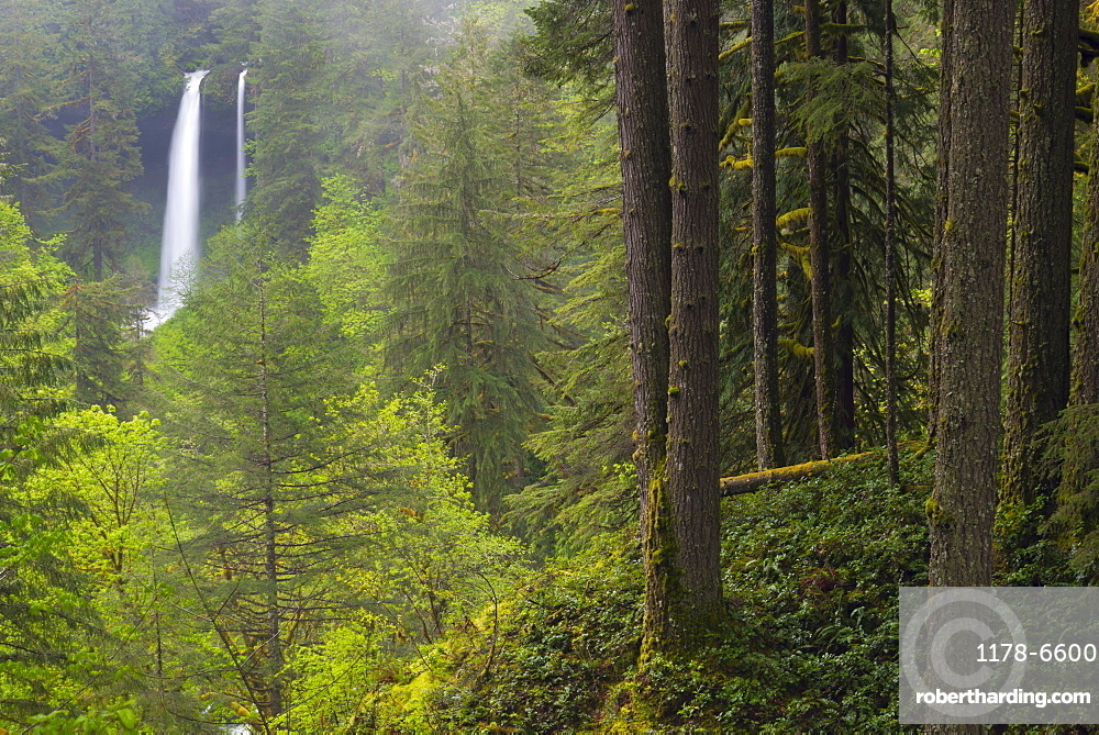 Silver state park with waterfall in background, Marion County, Oregon