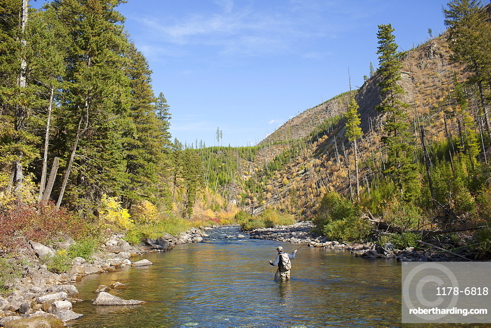 Fisherman wading in river, North Fork Blackfoot River, Montana, USA