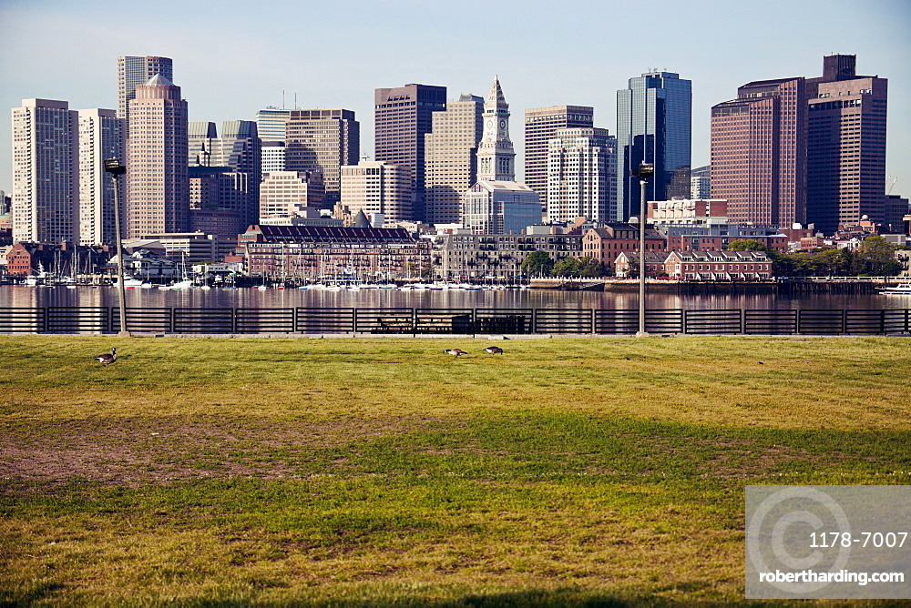 Skyline at sunrise, with grass foreground, USA, Massachusetts, Boston,