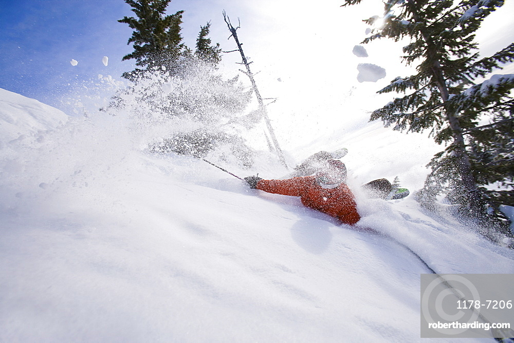 Man collapsing on powder snow while skiing