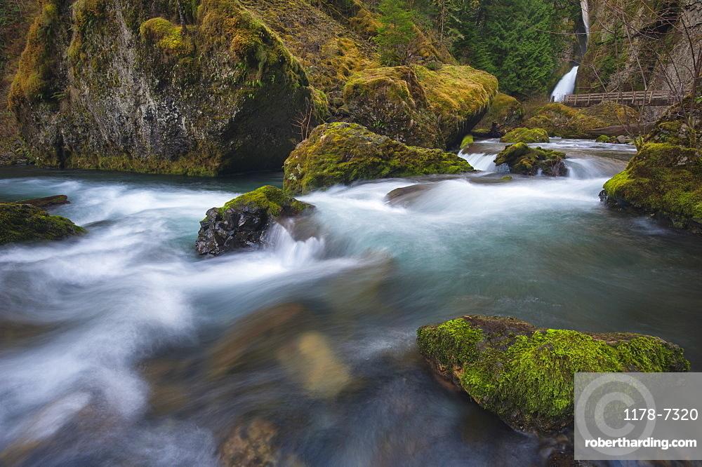 Wachlella Falls on Tanner Creek