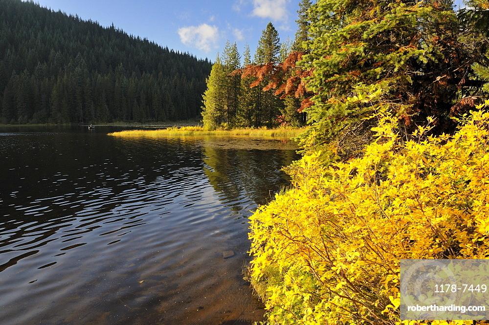 USA, Oregon, Multnomah County, Trillium Lake