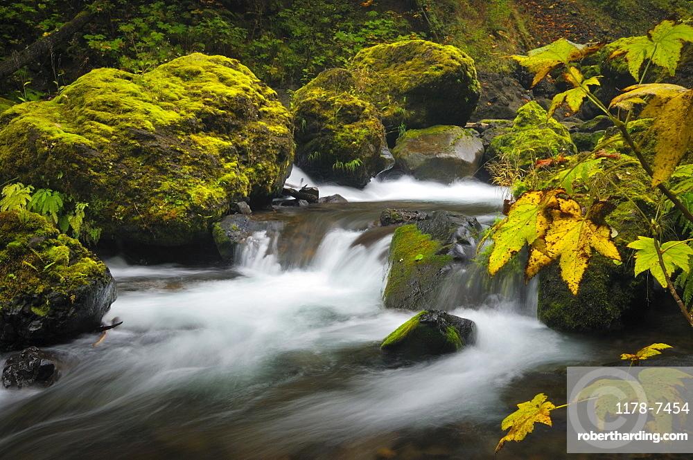 USA, Oregon, Eagle Creek