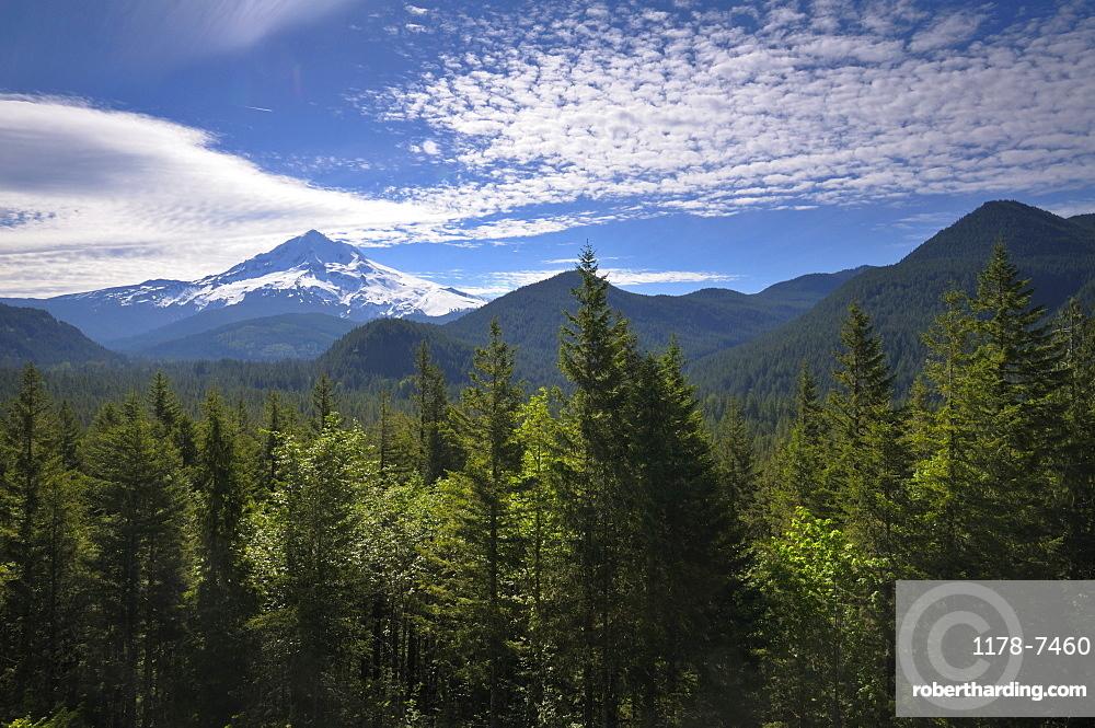 USA, Oregon, Multnomah County, Landscape with Mount Hood