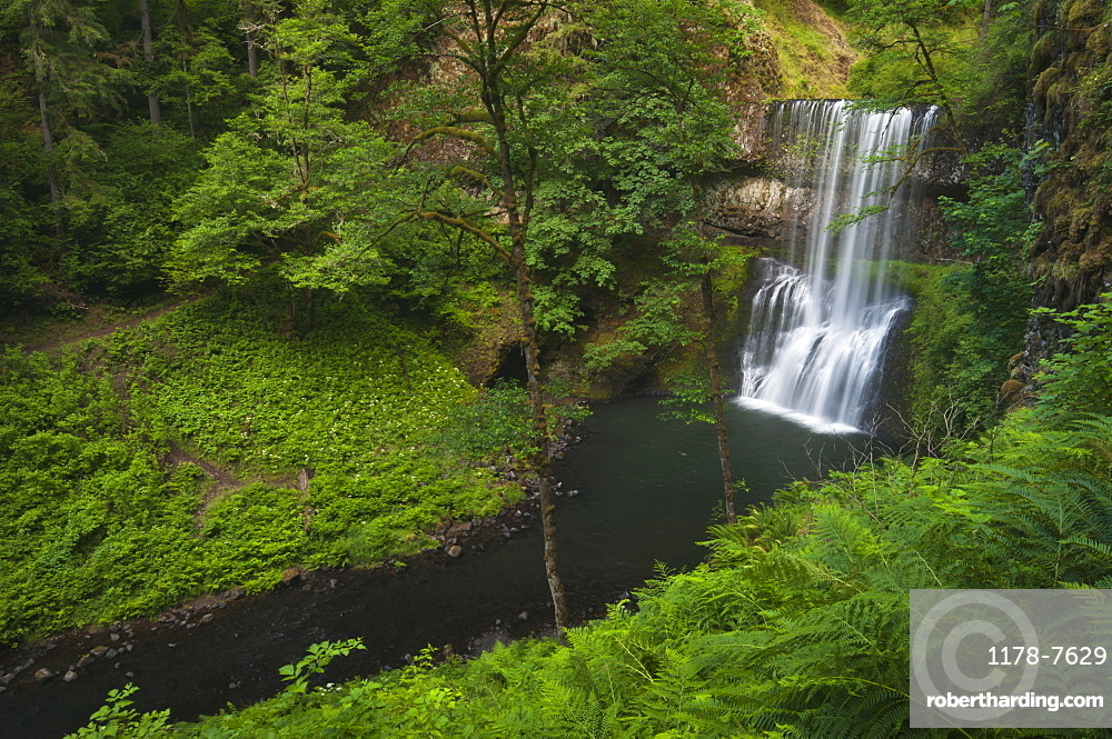 USA, Oregon, Silver Falls State Park, Lower South Falls