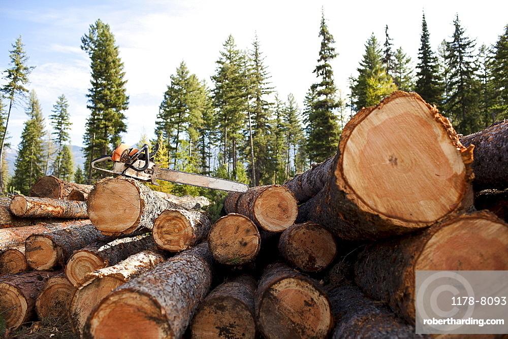 USA, Montana, electric saw on stack of logs