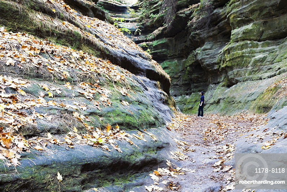 USA, Illinois, Starved Rock State Park, Woman standing in canyon