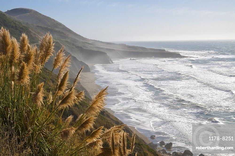 USA, California, Mendocino Coast