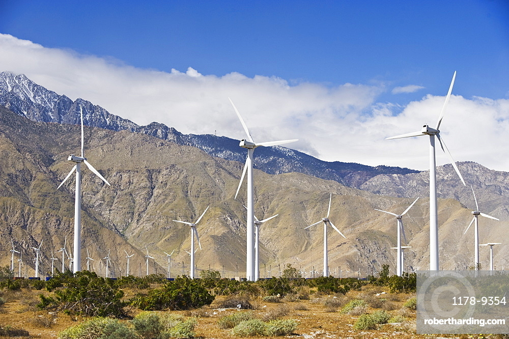 Wind farm in front of mountains, Palm Springs, California, United States