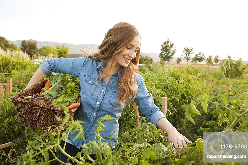 Portrait of young woman harvesting vegetables, Salt Lake City, Utah