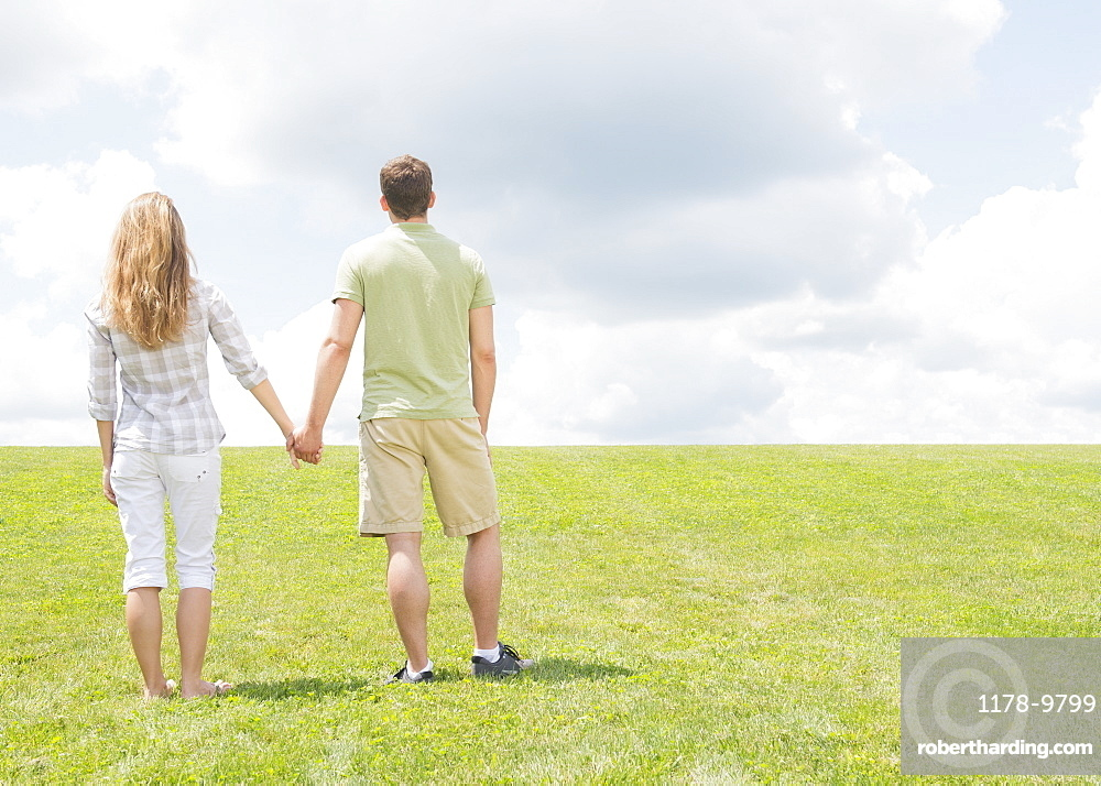 Couple standing on grass and holding hands, USA, New Jersey, Mendham