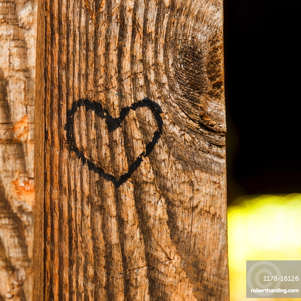 Heart shape carved into plank