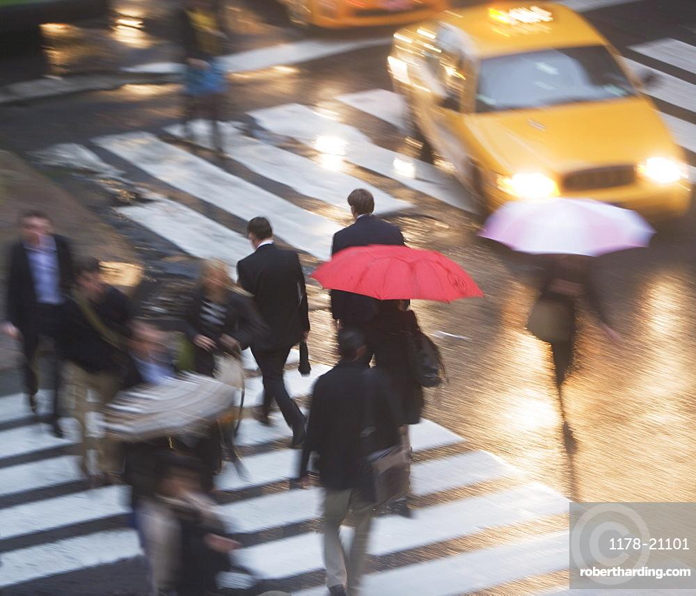 USA, New York state, New York city, pedestrians with umbrellas on zebra crossing