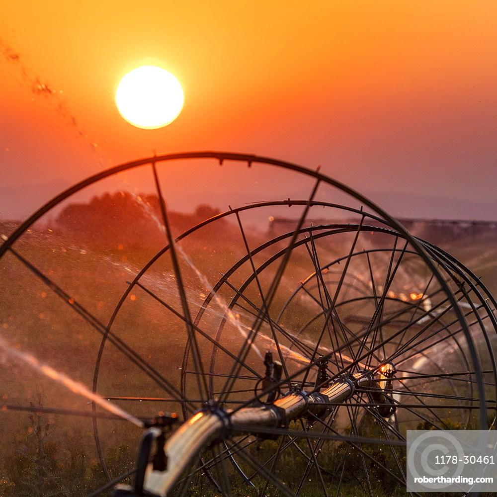 USA, Idaho, Bellevue, Irrigation wheel at sunset